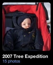 2007 Tree Expedition